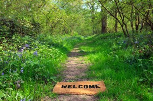 welcome to path of healing with psychotherapy, counseling and life coaching